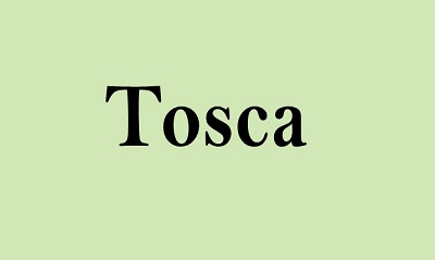 Tosca Online Training